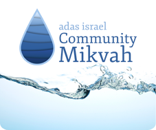Community Mikvah
